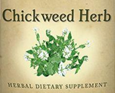 Chickweed Herbal Dietary Supplement