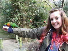 having fun with the birds! Just For Fun, Have Fun, Photographs, Birds, Illustration, Photos, Bird, Illustrations