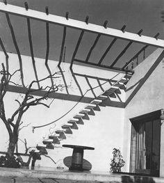 Paradise Backyard: Gio Ponti