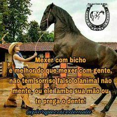 Vaqueira Frases Pesquisa Google Vaqueiras Apaixonadas Horses E