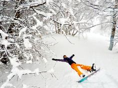 Looking for tailor-made ski holidays, short ski breaks and ski weekends to Europe, North America and Japan? We're here to help with ski holidays your way. Ski Weekends, Ski Holidays, North America, Skiing, Powder, Shots, France, Japan, Amazing