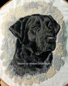 Labrador cross stitch kit