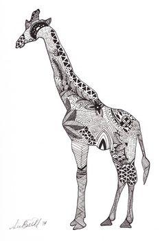 Stag From Millie Marottas Animal Kingdom
