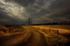 Resultados da Pesquisa de imagens do Google para http://blog.benfinkphoto.com/wp-content/uploads/2012/03/Old_Farm_Road_Tunica_Mississippi.jpg