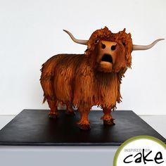 "Highland Cow or ""Heelin Coo"" by Inspired by Cake - Vanessa Fondant Horse, Fondant Animals, Horse Cake, Cow Cakes, Fondant Cakes, Gorgeous Cakes, Amazing Cakes, Cake Structure, Scottish Highland Cow"