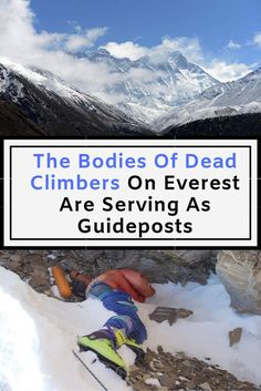 The Bodies Of Dead Climbers On Everest Are Serving As Guideposts Weird Facts, Fun Facts, Celebrities Exposed, Famous Celebrities, Thing 1, New Gossip, Climbers, Health And Safety, Videos Funny