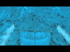 How Seafood is Caught: Bottom Trawling