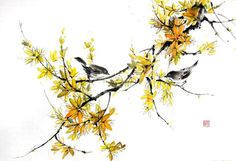 Japanese Ink Painting, Asian art, Sumi-e, Suibokuga, Flower and Birds painting,Rice paper,Yellow Black, Large  Forsythia and birds painted with Sumi - ink and Gansai (Japanese watercolor) on the Japanese rice paper (gasenshi). size (inch): 25 x17 inch size (cm): 64x 44 cm Mounting: backed