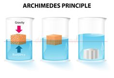 Illustration about Archimedes principle. The buoyant force acting on an object is equal to the weight of the displaced fluid. Illustration of fluids, fluid, archimedes - 37211092 Science Fair, Science For Kids, Science Projects, School Projects, Force And Pressure, Oral Pathology, Steam Activities, Il Piccolo Principe, Strength