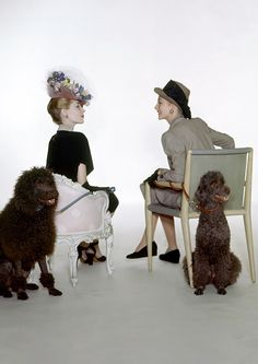 Two ladies and her poodles, 1945....  Solving the problems of the world over Fro-Yo...perfect!