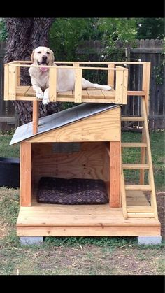 He Loves his house - aww Pallet Dog House, Dog House Plans, Dyi Dog House, Winter Dog House, Dog Backyard, Dog Playground, Dog Spaces, Dog Yard, Cool Dog Houses