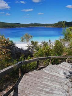 Fraser Island is a must-do for all visiting the East Coast of Australia. Get a and visit the world's largest sand island to see a dingo. Fraser Island Australia, Coast Australia, Australia Travel, Sand Island, Water Activities, Sunshine Coast, Travel Images, Solo Travel, Vacation Spots