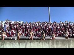 Alabama A University Band 2011 - Lovely Day