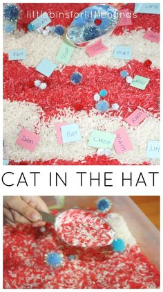 Dr. Seuss Sensory Bin Rhyming Activity