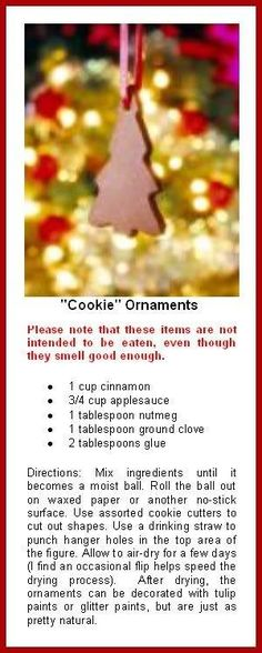 Non Edible Cinnamon Ornaments