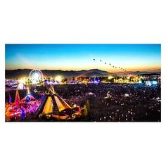 Calvin Harris Set To Headline This Year's Coachella Festival ❤ liked on Polyvore featuring home, home decor, holiday decorations and festive home decor