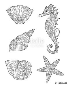 Vector: Adult coloring page with seashells, seahorse and starfish in zentangle style. Doodle hand drawn sketch of sea animals. Decorative element for T-shirt emblem, tattoo, logo.