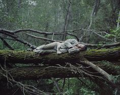Meditative Photos of Hermits and Their Woodland Homes