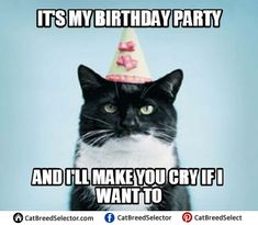 Looking for for ideas for happy birthday for him?Check this out for perfect happy birthday ideas.May the this special day bring you happy memories. Happy Birthday Quotes For Daughter, Happy Birthday Best Friend, Happy Birthday Funny, Birthday For Him, Happy Birthday Gifts, Birthday Wishes, Grumpy Cat Birthday, Birthday Funnies, Happy Birthdays