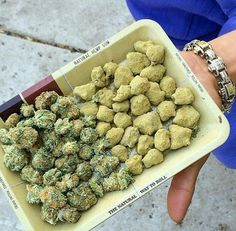 Looking to get in the booming 40 billion dollar cannabis industry? Start your cannabis career with cannabis certifications from Cannabis Training University. Go to the ultimate thc university, Cannabis Training University. Learn how to grow cannabis from Buy Cannabis Online, Buy Weed Online, Online Buying, Ganja, La Confidential, Cbd Oil For Sale, Cannabis Oil, Thc Oil, Herbs