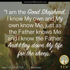 """""""I am the Good Shepherd. I know My own and My own know Me, just as the Father knows Me and I know the Father. And I lay down My life for the sheep."""" John 10:14-15 TLV #tlvbible #verseoftheday"""
