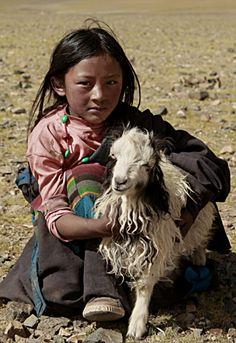 Gotta Goat . Tibet