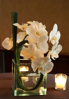 Love the arrangement of this orchid centerpiece. Like the green stems showing - clean lines and fresh arrangement.  Maybe for cake table, bar area, or sign in table