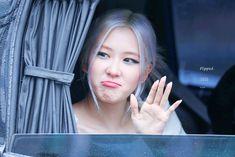 K Pop, Cute Rose, Blackpink Memes, Rose Park, Black Pink Kpop, Blackpink Fashion, Park Chaeyoung, Yg Entertainment, Korean Girl Groups