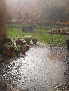 Shades of Rain ❤️