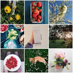Marlene's Blog: Mai 2016