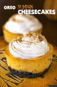 Oreo Pumpkin Mini Cheesecakes | cakescottage.com