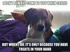Oh Bailey