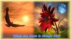 When the Moon is Always New