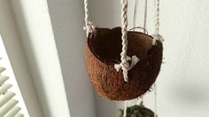 DIY planters | Coconut hanging planter Be sure to have a look at my other Pinterest, Houseplant Central, if you love houseplants, cacti, succulents, orchids and more!