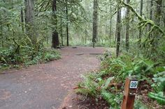 Bear Springs Campground Maupin Oregon Mt Hood