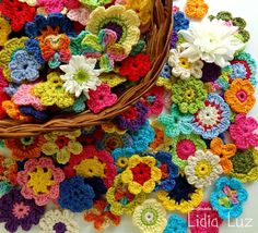 Lidia Luz: Flores para a Rainha