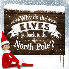 Why does your scout elf have to return to the North Pole? We've got the answers here. | Elf on the Shelf Ideas