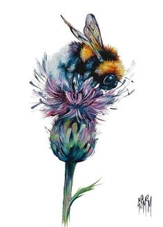Georgia McMaster - an amazing Scottish artist - my husband gave me a real ge . - Georgia McMaster – an amazing Scottish artist – my husband gave me a real Georgi …, - Art Aquarelle, Watercolor Paintings, Watercolour, Illustrations, Illustration Art, Bee Art, Painting & Drawing, Bee Painting, Painting Tattoo