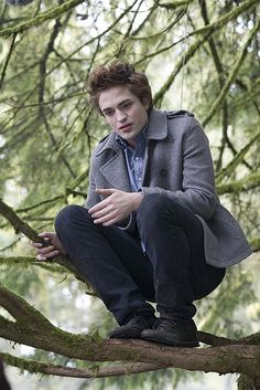 Edward - Twilight Saga