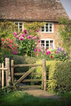 English Cottage covered with roses love the rustic wood fence