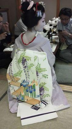 May 2015: maiko Katsutomo with seasonal obi - wisterias and irises with a bridge (SOURCE)