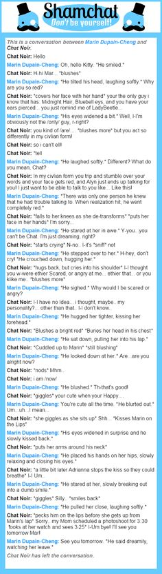 A conversation between Chat Noir and Marin Dupain-Cheng