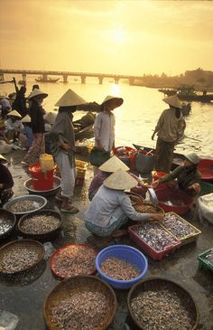 Fish market, Hoi An, Vietnam | David Noton Photography