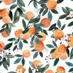 Joaquin Fabric Collection by Crystal W Design at Hawthorne Supply Co Nursing Pillow Cover, Apple Watch Wallpaper, Orange Aesthetic, Iphone Background Wallpaper, Orange Blossom, Pattern Wallpaper, Print Wallpaper, Fabric Wallpaper, Wall Collage