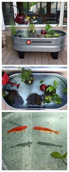 Make pond out of a horse trough. Just add water, pond plants, and fish!