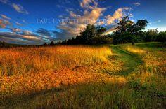 Fine Art Photography - Lanscape Photography - Outdoor Photography - Photo Art - 16 X 24 - Prints Photogr on Etsy, $55.00