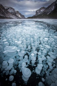 Frozen methane bubbles create artistic images Photographer captures phenomenon in lakes of Banff National Park in Canada. Methane bubbles become frozen in beautiful phenomenon at Lake Minnewanka. Photo by Paul Banff National Park, National Parks, Beautiful World, Beautiful Places, Frozen Bubbles, Natural Phenomena, Amazing Nature, Nature Photography, Levitation Photography