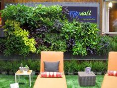 Dwell on Design:  Vertical Gardens