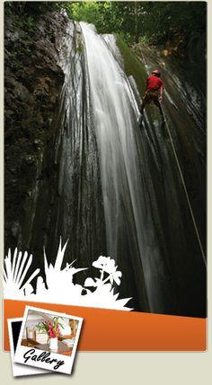 Waterfall Repelling-Osa Peninsula, Costa Rica