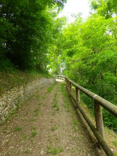 Parco Fluviale  - Carzano Valsugana (TN) Italy